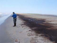 Environmental impact assessments, South Pass Oil Impacts